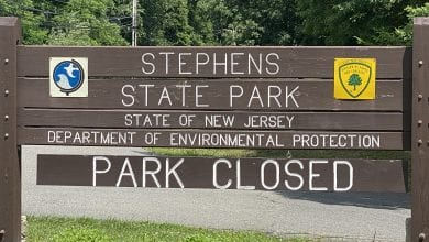 Photo of Stephen's State Park temporarily closed for emerald ash borer tree removal project