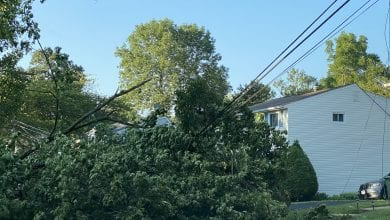 Photo of FirstEnergy crews continue to make repairs following Tropical Storm Isaias