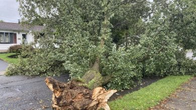 Photo of Tropical Storm Isaias leaves thousands without power in Northwest New Jersey