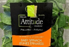 Photo of Vegpro International issues a recall of Fresh Attitude Baby Spinach due to potential Salmonella health risk