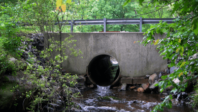 Photo of Berkshire Valley Road Bridge near Longwood Lake in Jefferson Twp to be replaced