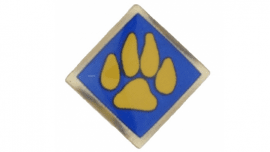 Photo of Boy Scouts of America recalls cub scout activity pins due to violation of the federal lead content ban
