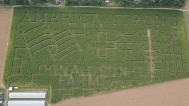 Photo of Warren County corn maze benefits American Red Cross New Jersey Region