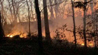 Photo of Crews battle forest fire at Delaware Water Gap