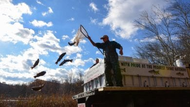 Photo of Winter trout stocking is this Monday and Tuesday