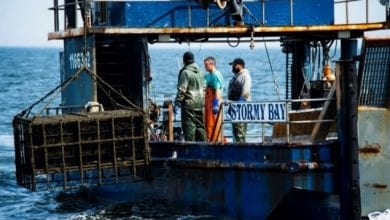 Photo of Murphy Administration announces $11.2M available to help fishing businesses impacted by COVID-19