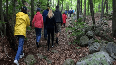 Photo of OptOutside on Friday with a guided hike at Lake Hopatcong