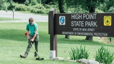 Photo of NJ DEP accepting applications for hundreds of seasonal jobs at state parks, forests and historic sites