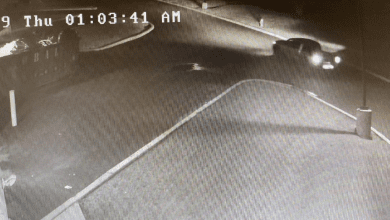 Photo of Police investigating theft of trailer, lawn mowers (VIDEO)