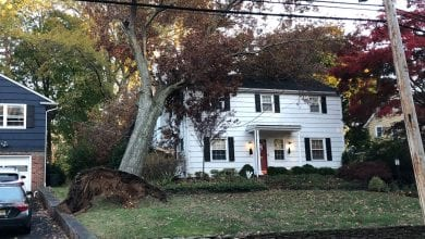 Photo of National Weather Service confirms tornado touched down in Morris County