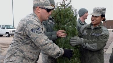 Photo of Donaldson's GreenhouseandNursery participates in 'Trees for Troops'