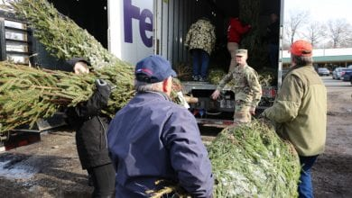 Photo of Donate a Christmas Tree to a military family