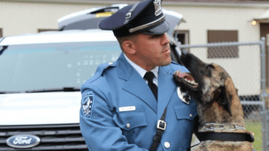 Photo of Hackettstown police announce traffic advisory, road closings ahead of memorial service for K9 Jada